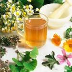 El poder de la medicina natural en las plantas